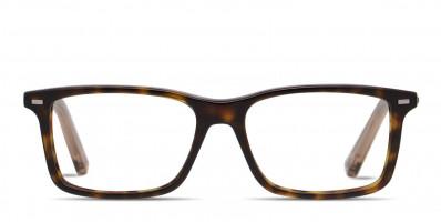 Ermenegildo Zegna EZ5008 Brown/Tortoise/Clear