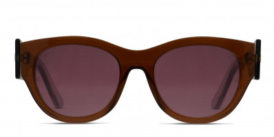 Tod's TO0167 Brown/Clear