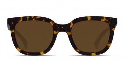 Adidas AOR019 Tortoise/Black/Brown