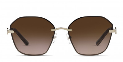 Tory Burch TY6081 Brown , Gold